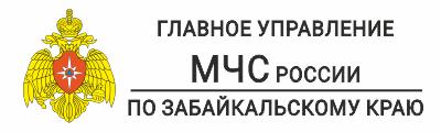 baner-mchs